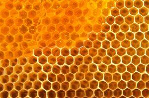 Honey at Roscore Clinic